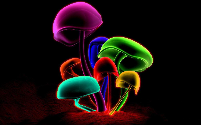Hình nền Neon 1440x900, Hình nền chất lượng cao của Neon ấn tượng