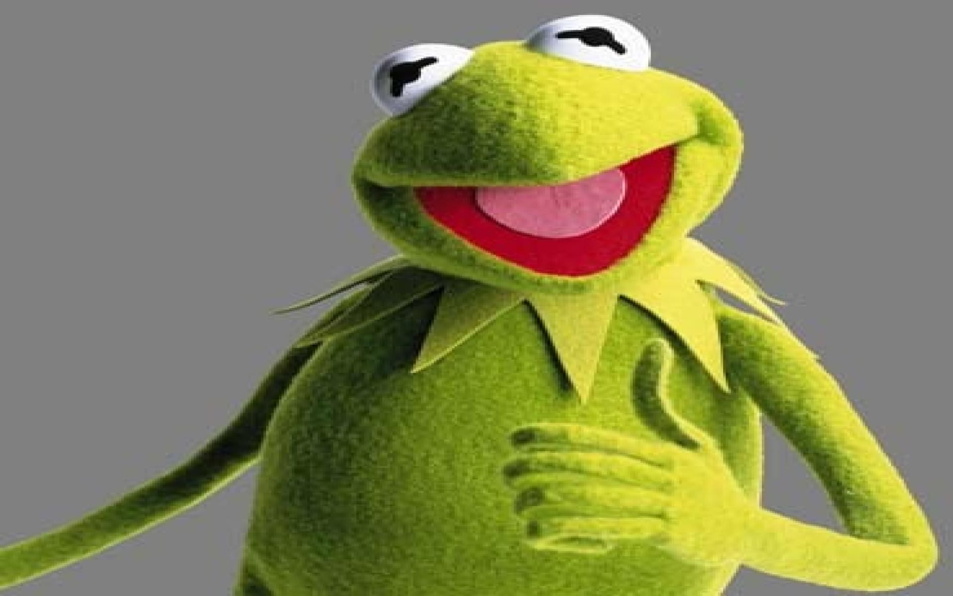 1920x1440 This Is My New Favorite Wallpaper Bliss Windows XP Kermit The
