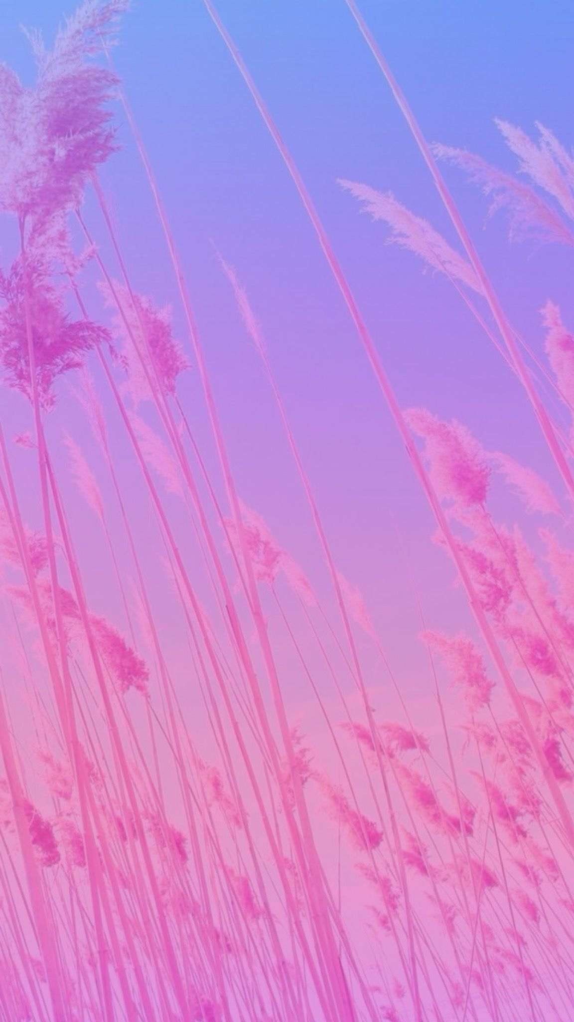 2560x1440px 2560x1440 Wallpaper For Youtube: Pastel Gradient Wallpapers