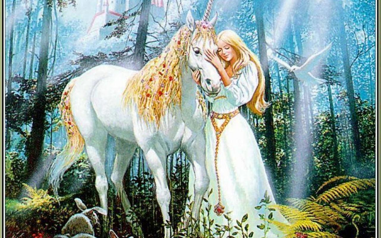 Unicorns And Fairies Wallpapers Top Free Unicorns And