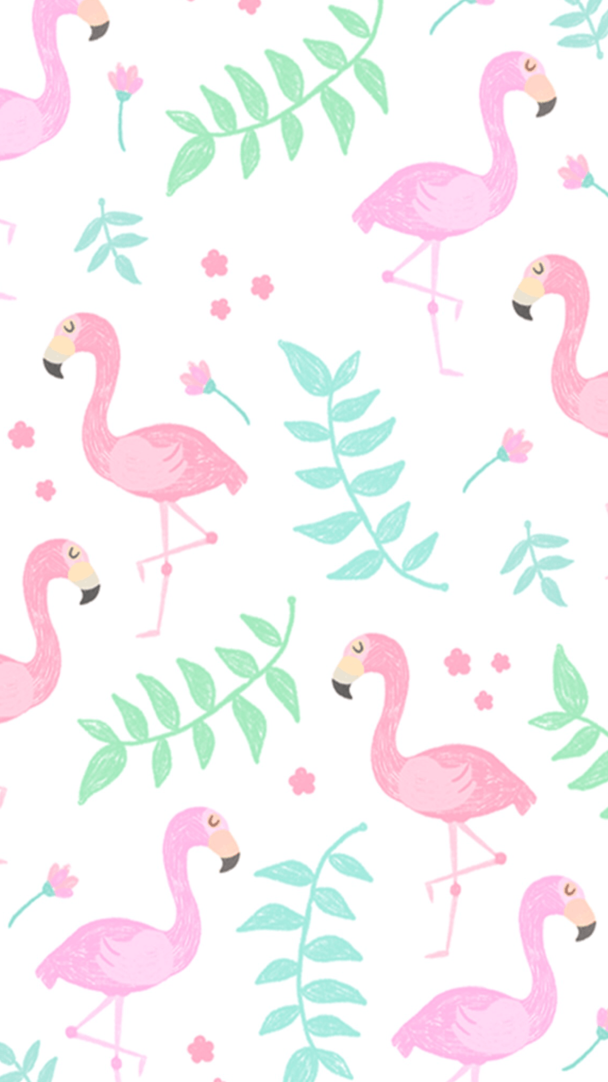 Flamingo Phone Wallpapers Top Free Flamingo Phone