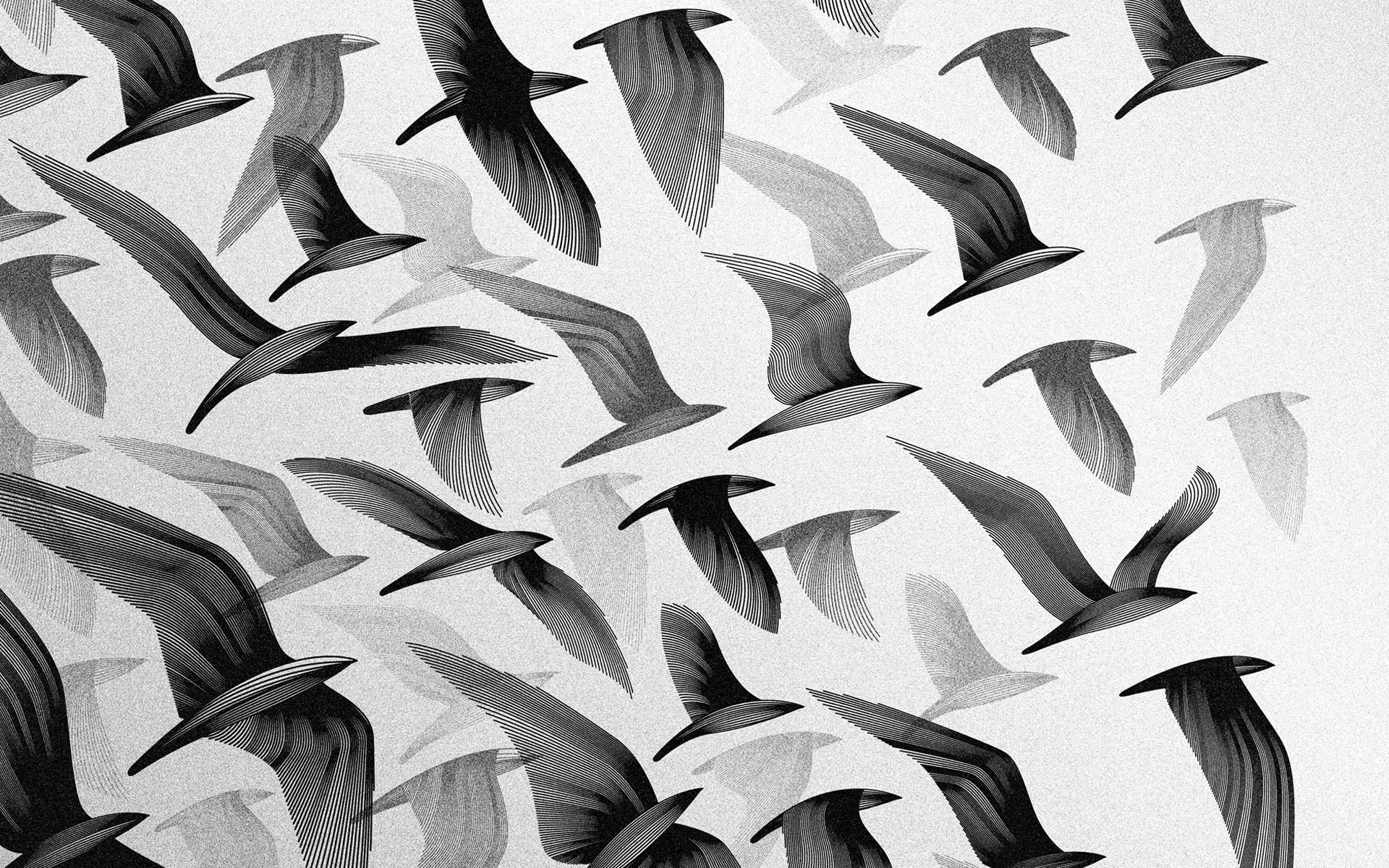 Tumblr Black And White Desktop Wallpapers Top Free Tumblr Black