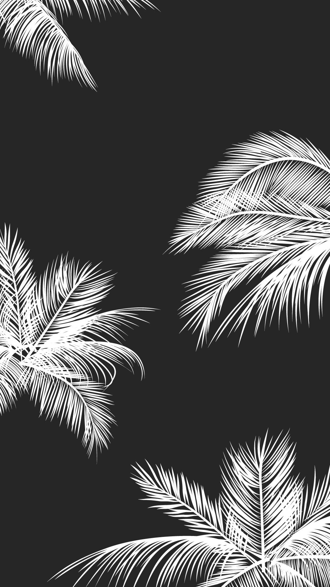 Cute Black And White Aesthetic Wallpapers Top Free Cute Black And White Aesthetic Backgrounds Wallpaperaccess