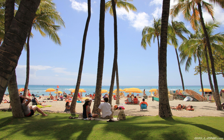Waikiki Beach Wallpaper Hd: Waikiki Hawaii Wallpapers