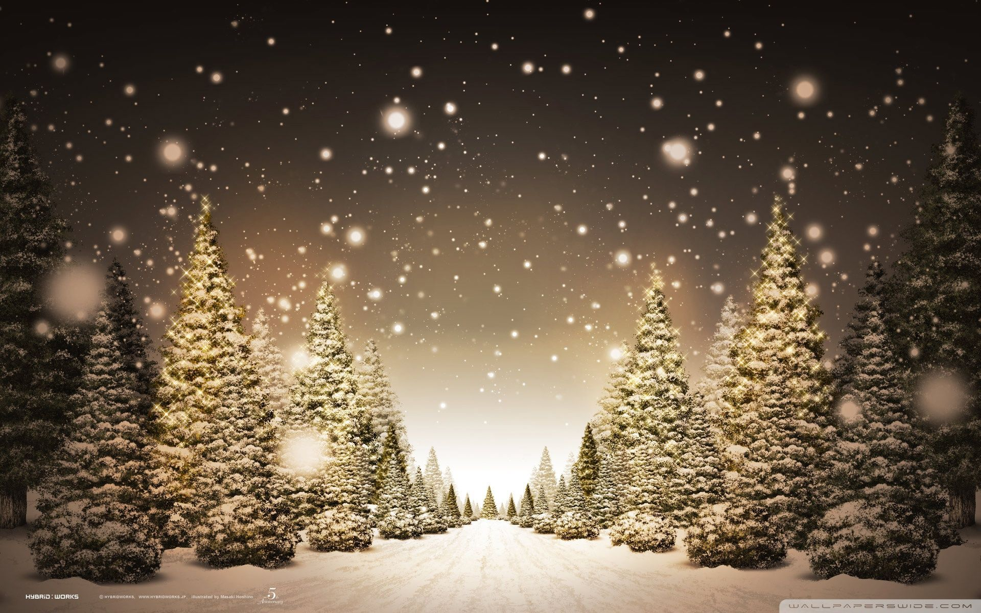 Christmas Forest.Christmas Forest Wallpapers Top Free Christmas Forest