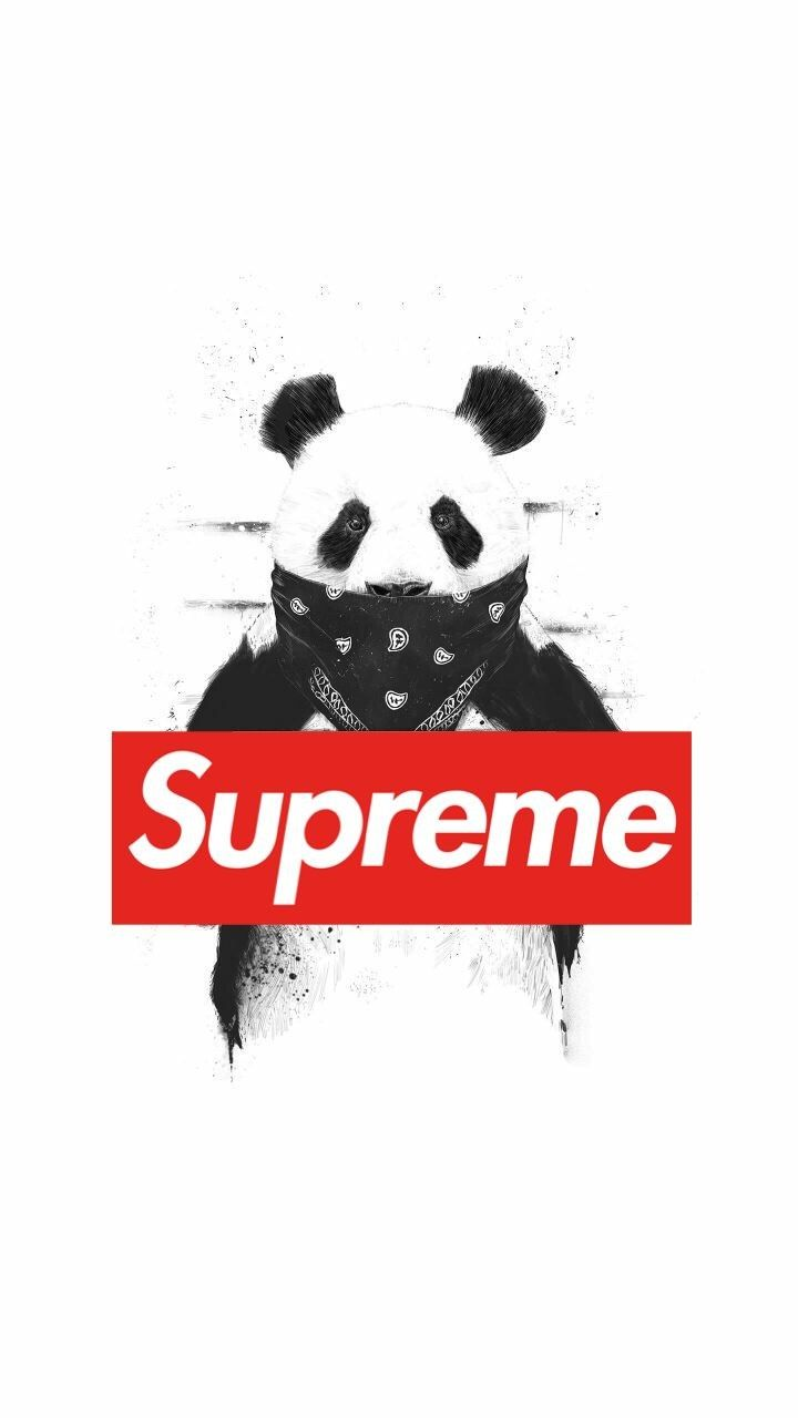 43 Best Free Supreme Brand Wallpapers Wallpaperaccess