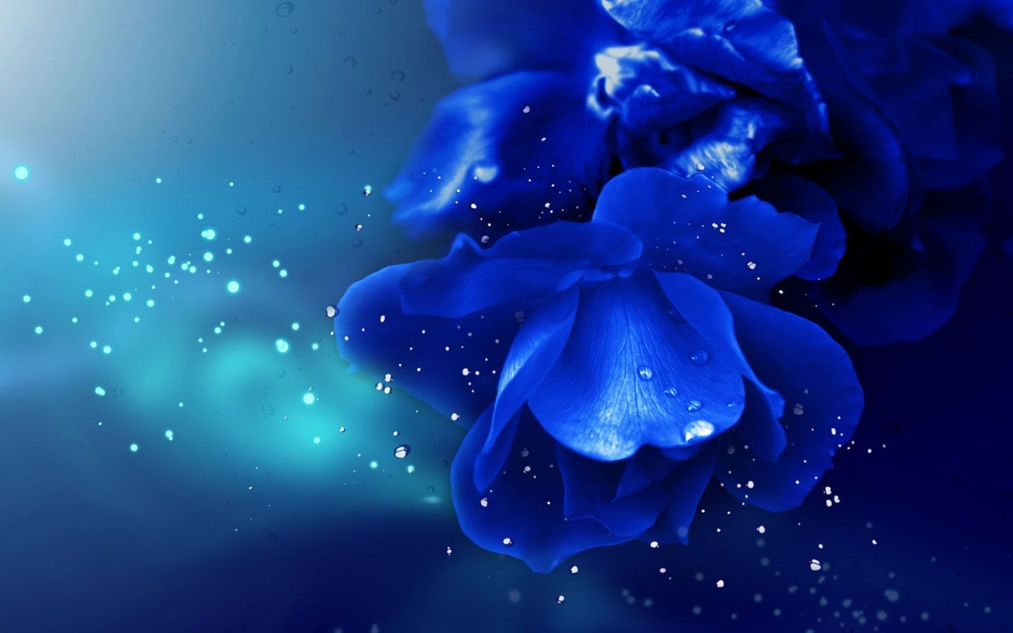 Royal Blue Flowers HD Wallpapers - Top Free Royal Blue ...
