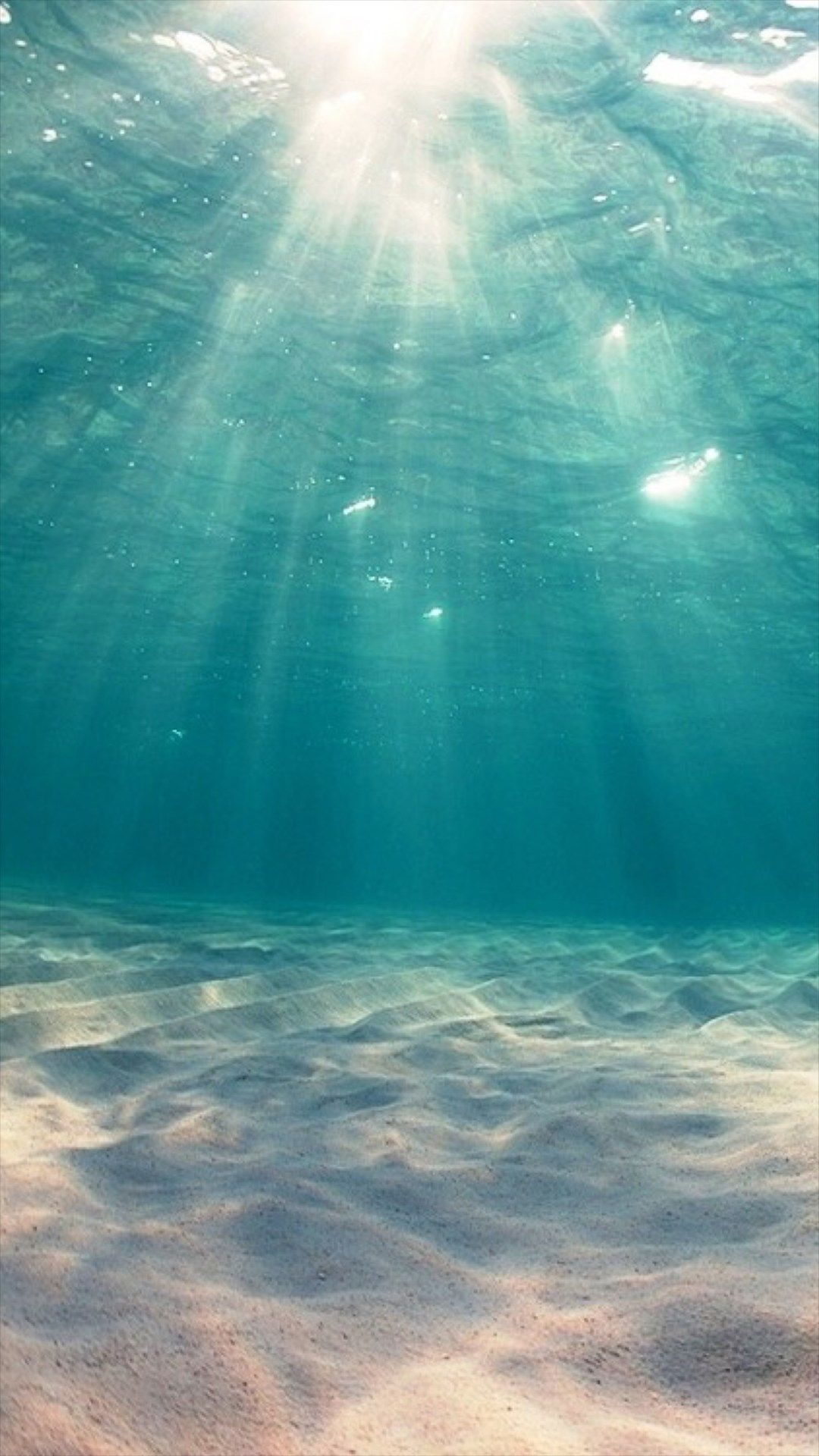 under the sea iphone wallpapers top