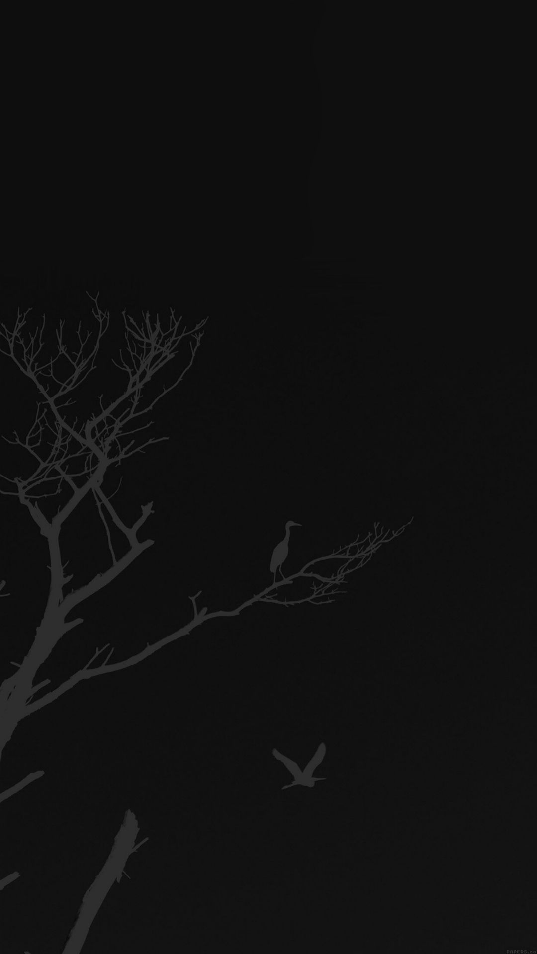 Black And White Minimalist Iphone Wallpapers Top Free