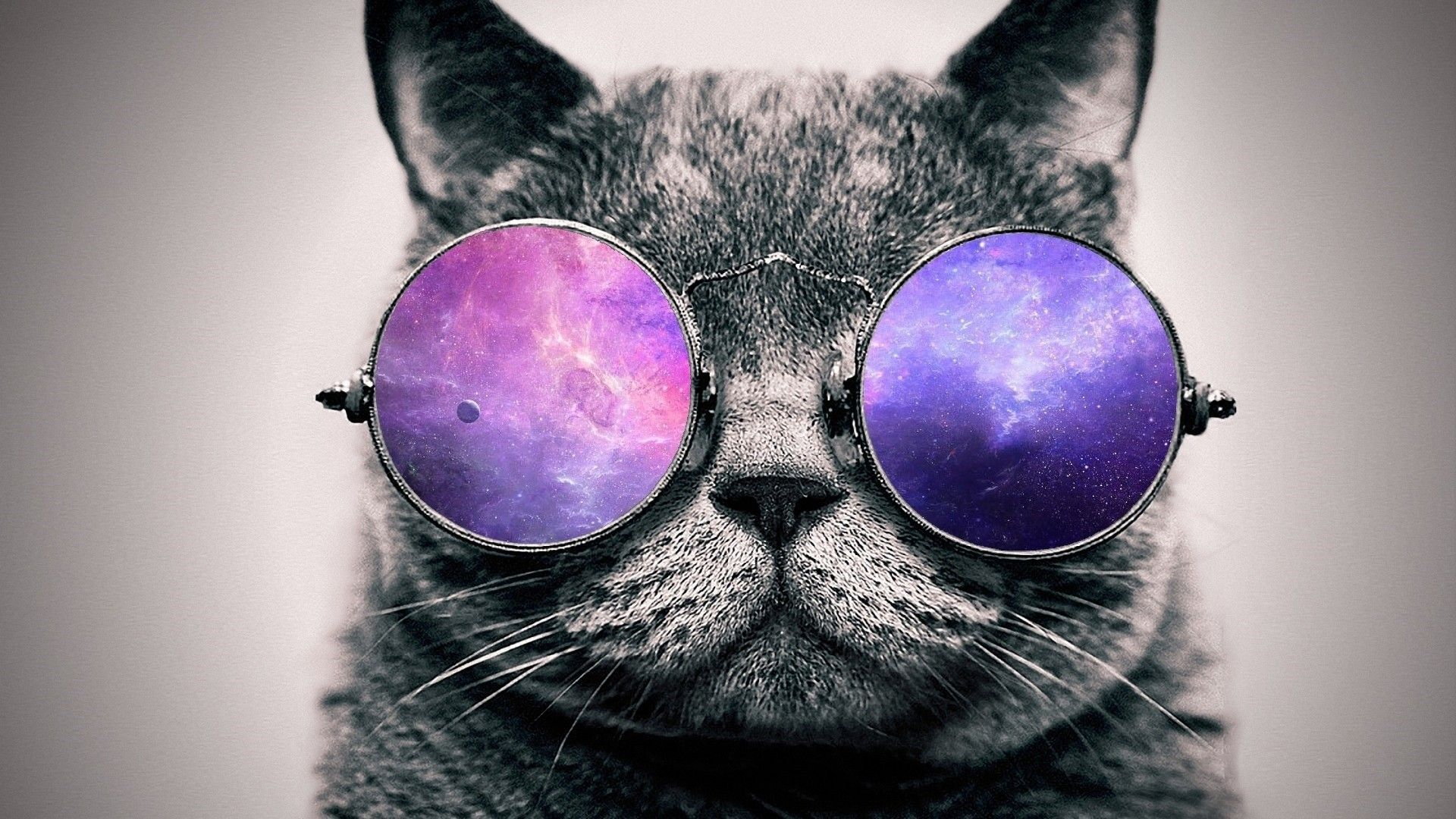 27 Best Free Glasses Cat Galaxy Wallpapers Wallpaperaccess