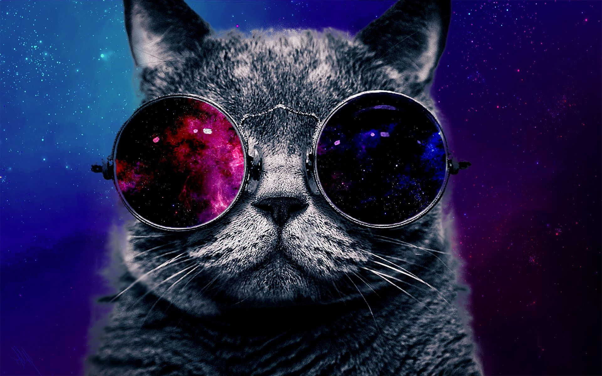 Glasses Cat Galaxy Wallpapers - Top Free Glasses Cat ...
