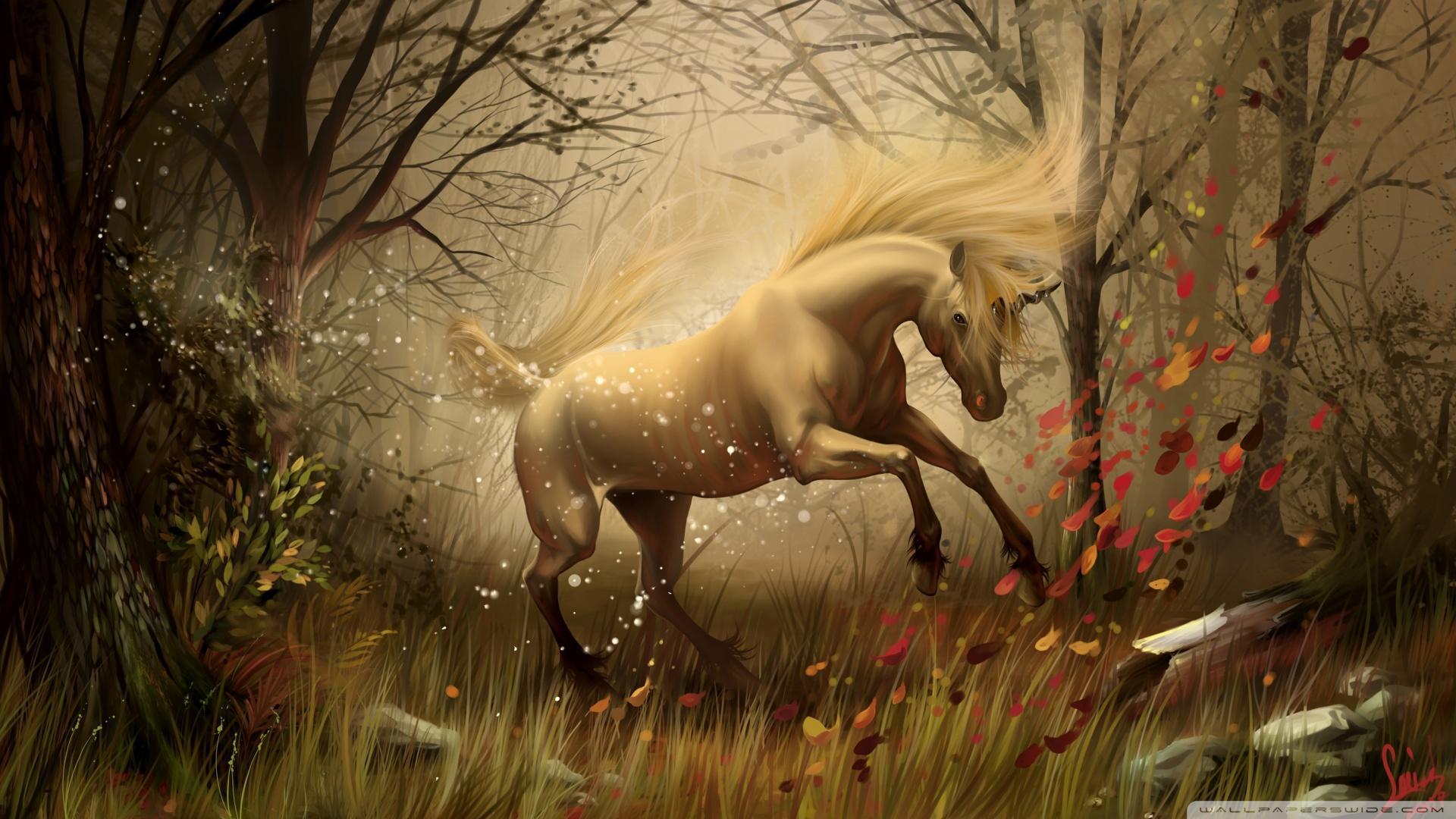 Mystical Unicorn Wallpapers - Top Free Mystical Unicorn Backgrounds