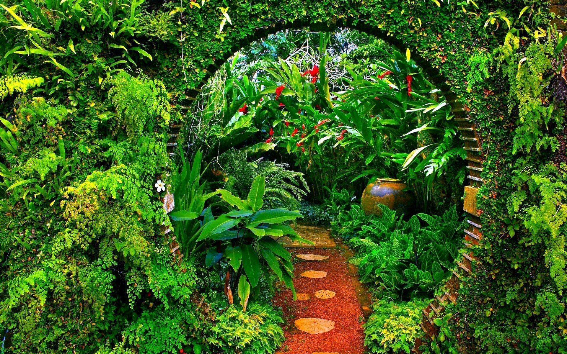 Plant Aesthetic Desktop Wallpapers - Top Free Plant ...