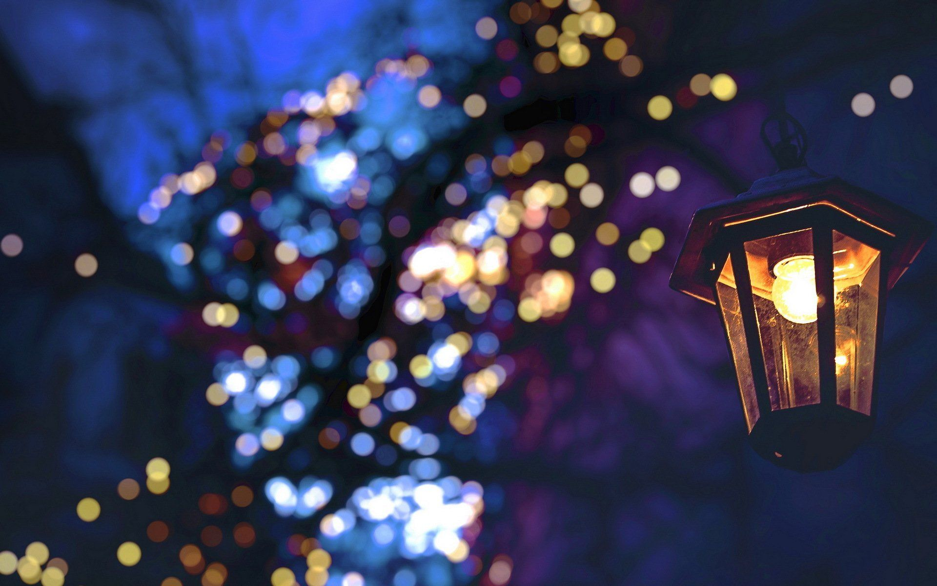 Fairy Lights Wallpapers - Top Free Fairy Lights Backgrounds