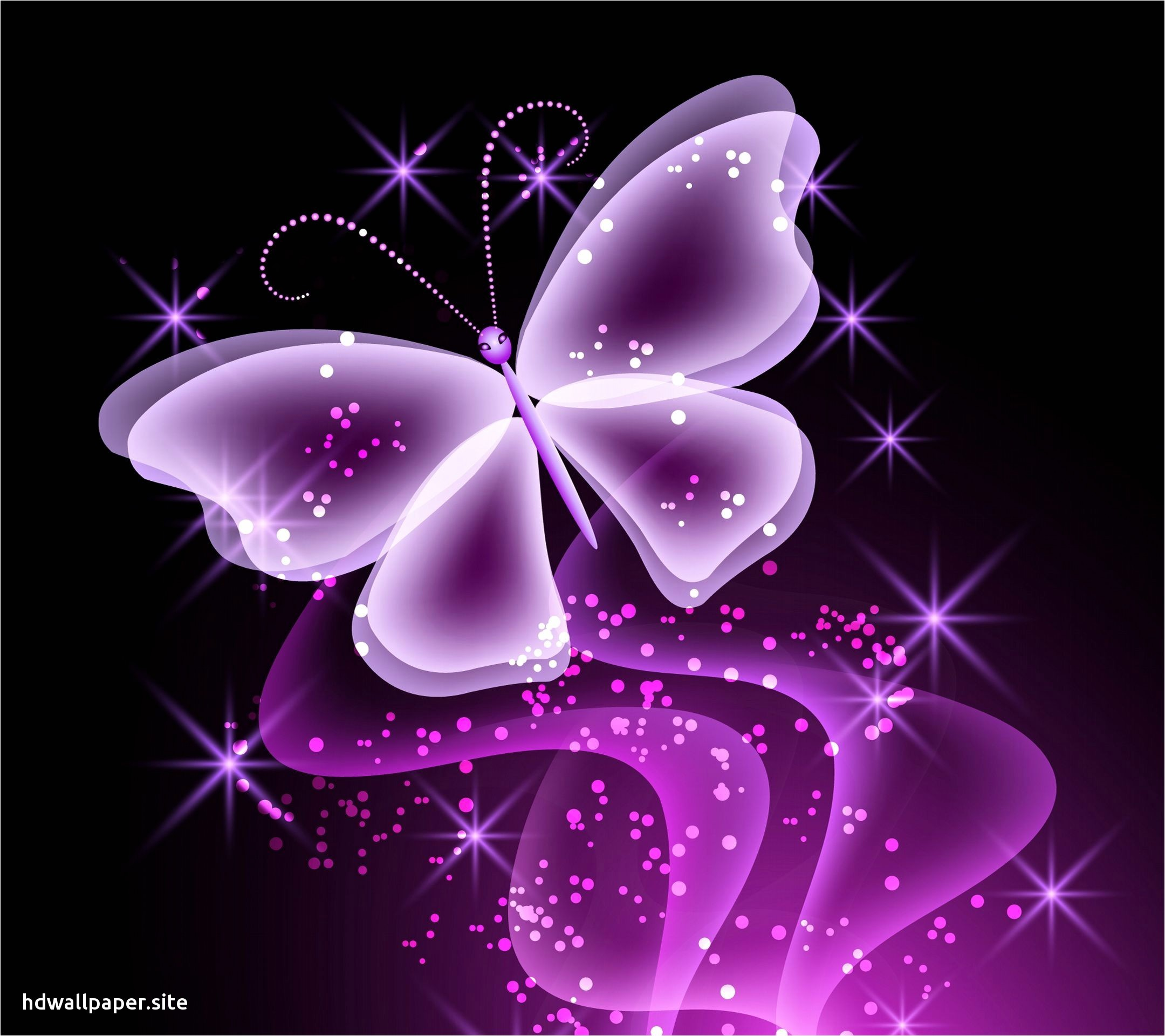 3d Butterfly Images Download Wallpaper Collection