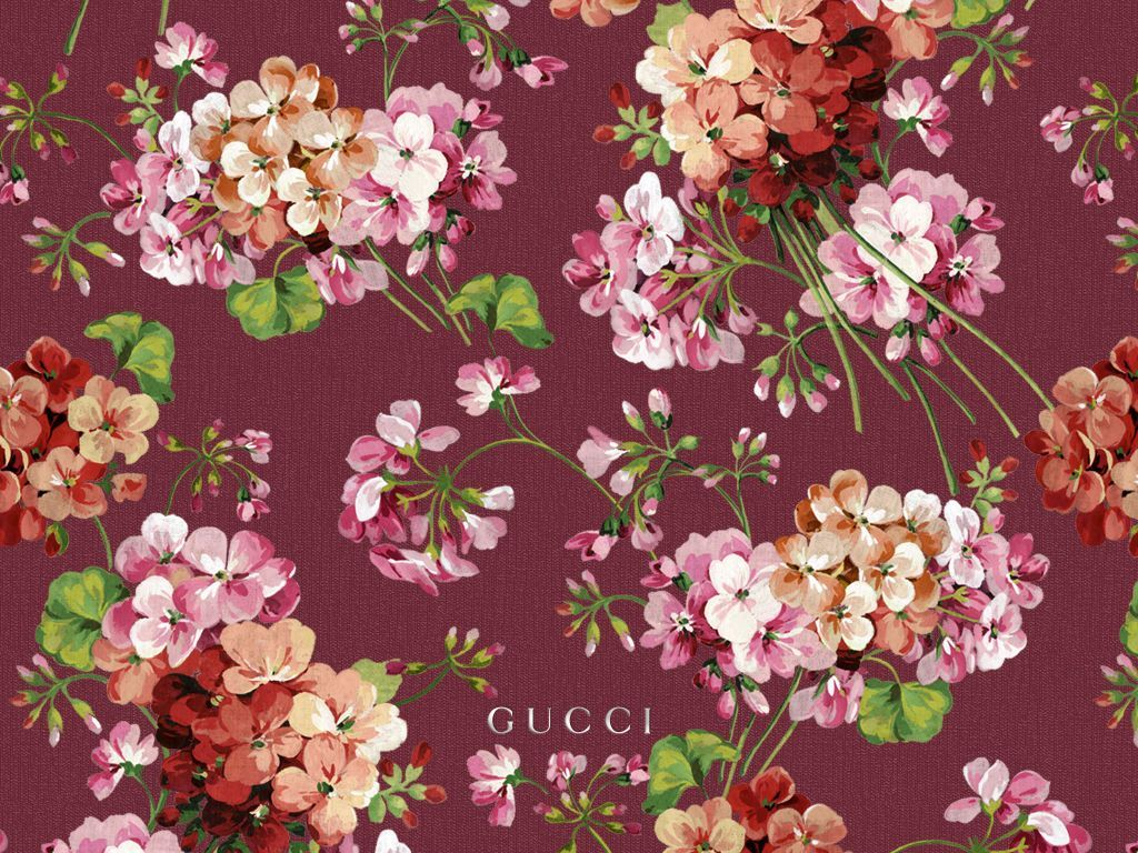 Gucci Floral Wallpapers Top Free Gucci Floral Backgrounds
