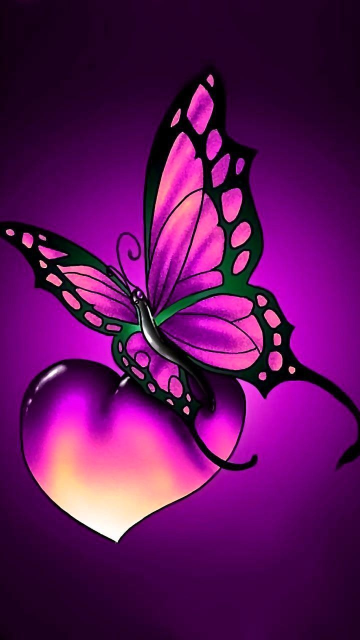 Image result for butterflies and hearts