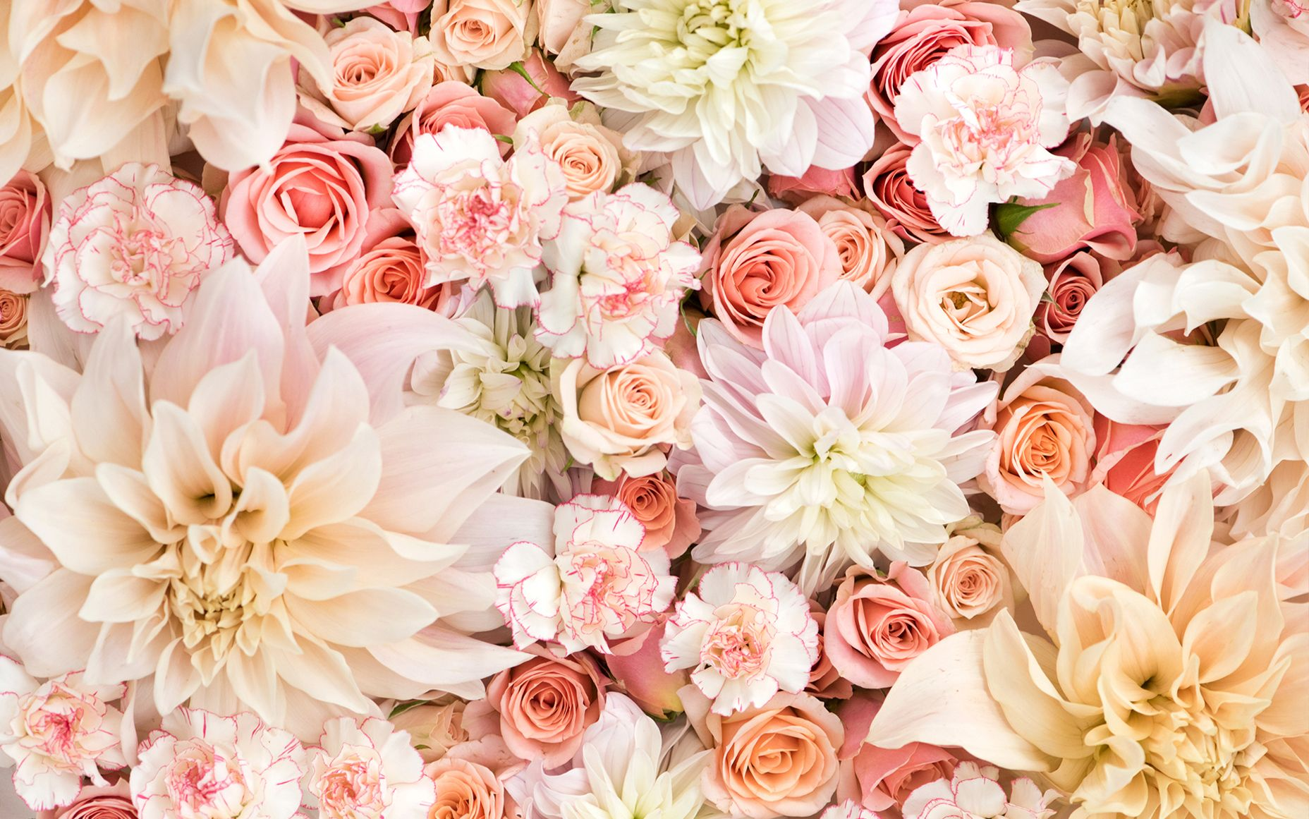 Rose Gold Floral Wallpapers Top Free Rose Gold Floral