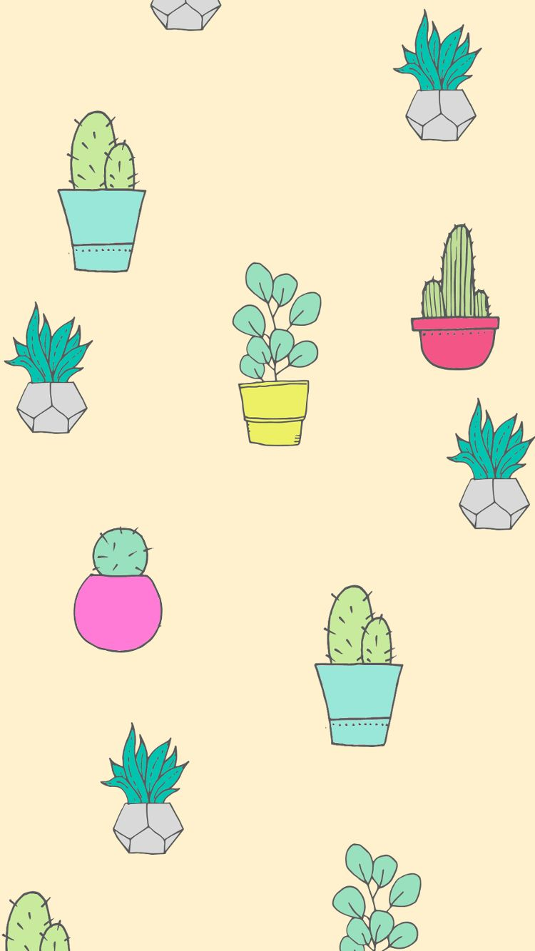 Succulent Phone Wallpapers Top Free Succulent Phone Backgrounds
