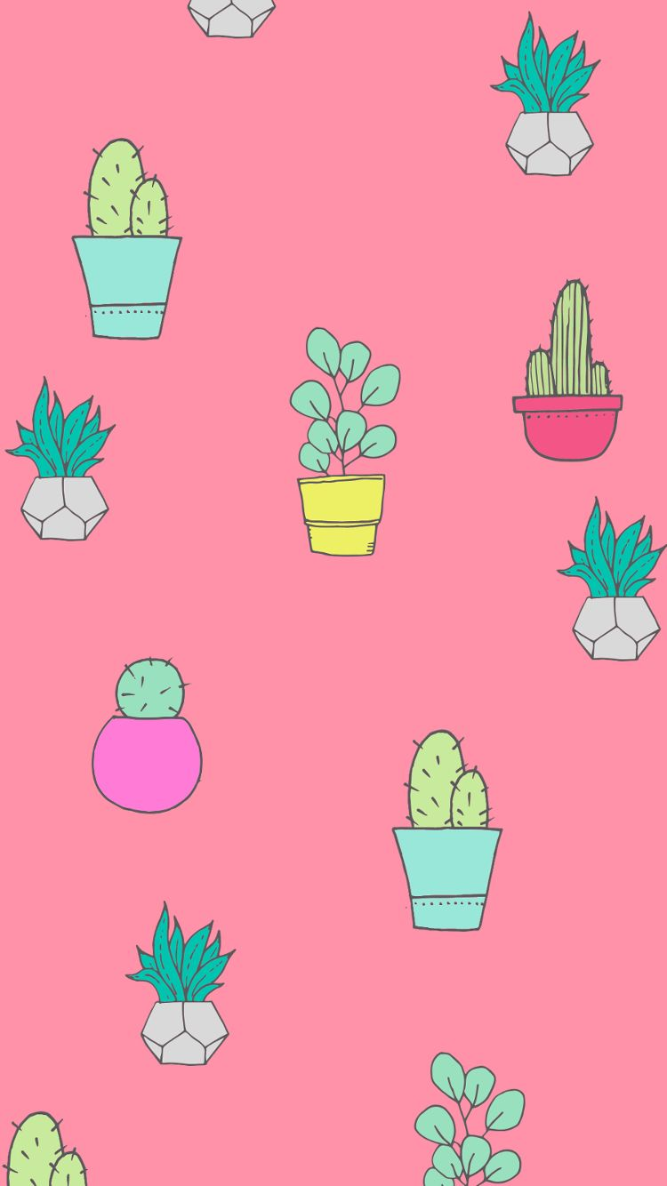 Cactus Cartoon Wallpapers Top Free Cactus Cartoon Backgrounds Wallpaperaccess