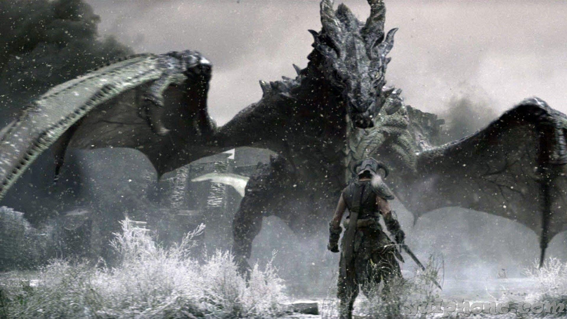 Skyrim Dragon Wallpapers Top Free Skyrim Dragon Backgrounds
