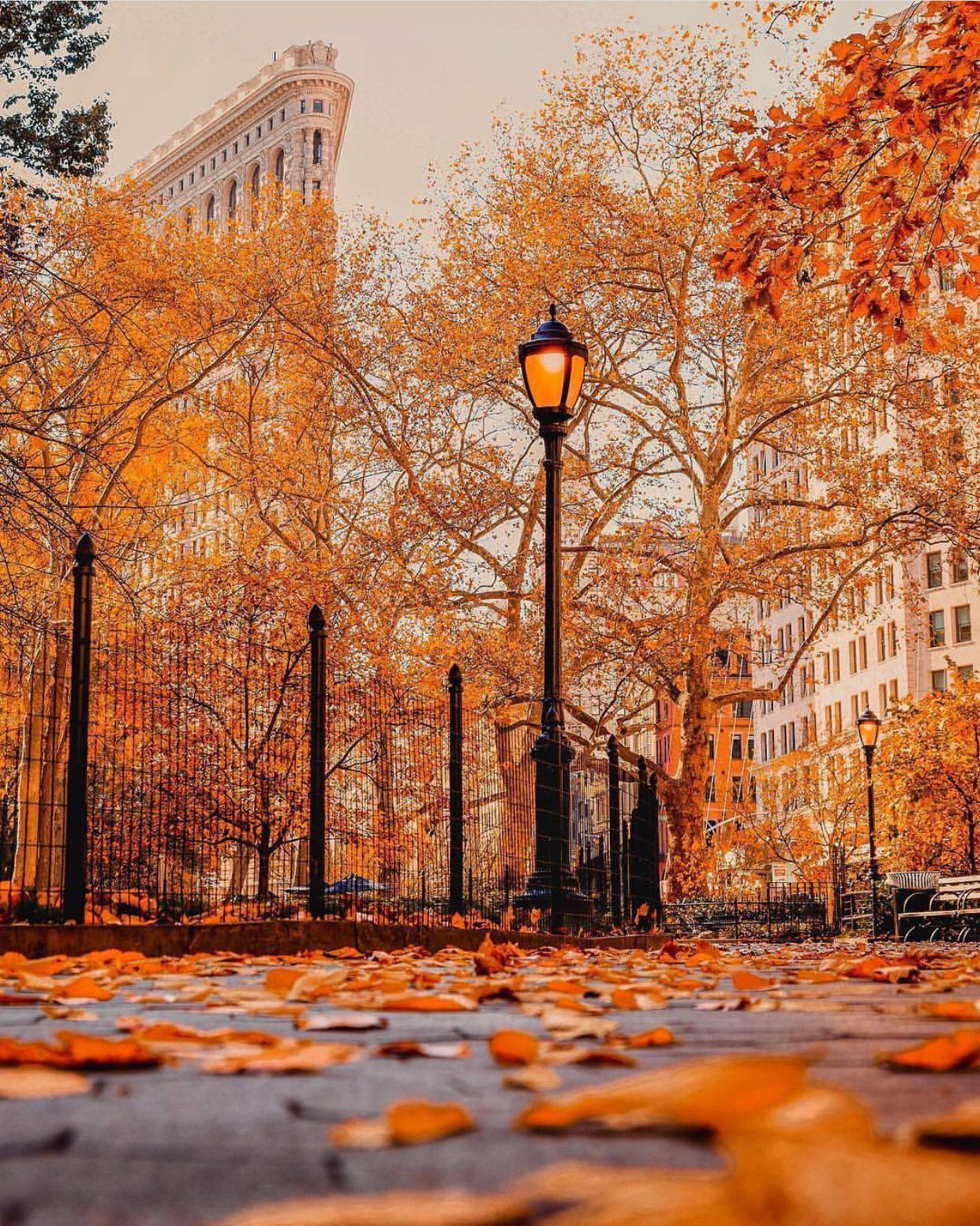 Nyc Fall Wallpapers Top Free Nyc Fall Backgrounds