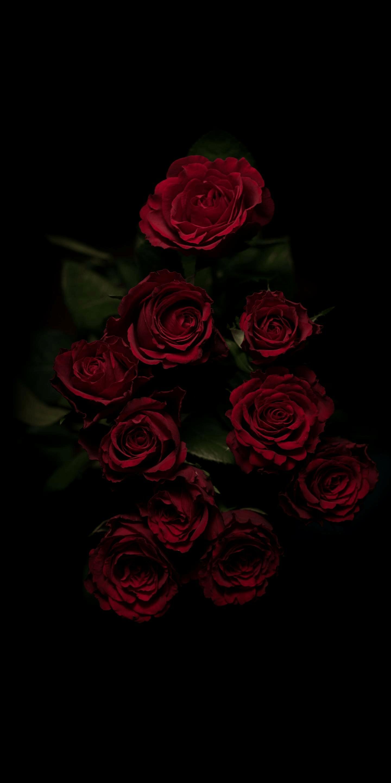 Dark Flower Aesthetic Wallpapers , Top Free Dark Flower