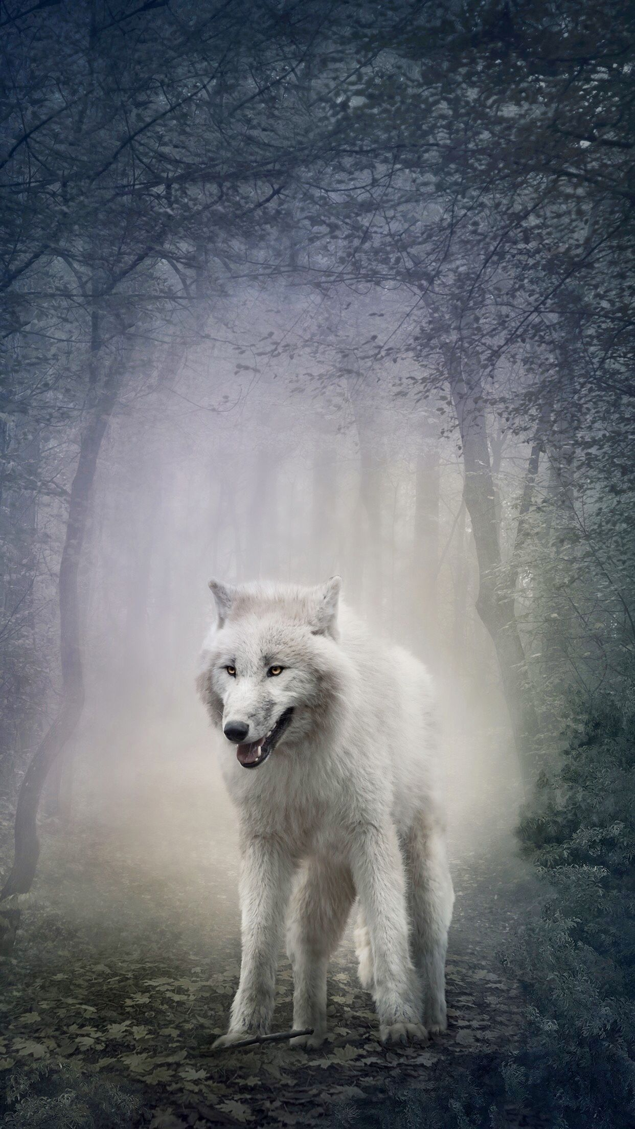 White Wolf Iphone Wallpapers Top Free White Wolf Iphone