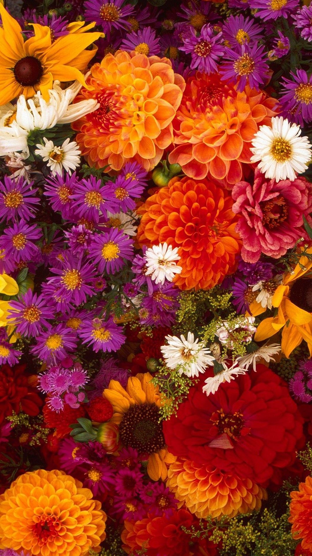 Flower Android Wallpapers Top Free Flower Android Backgrounds Wallpaperaccess