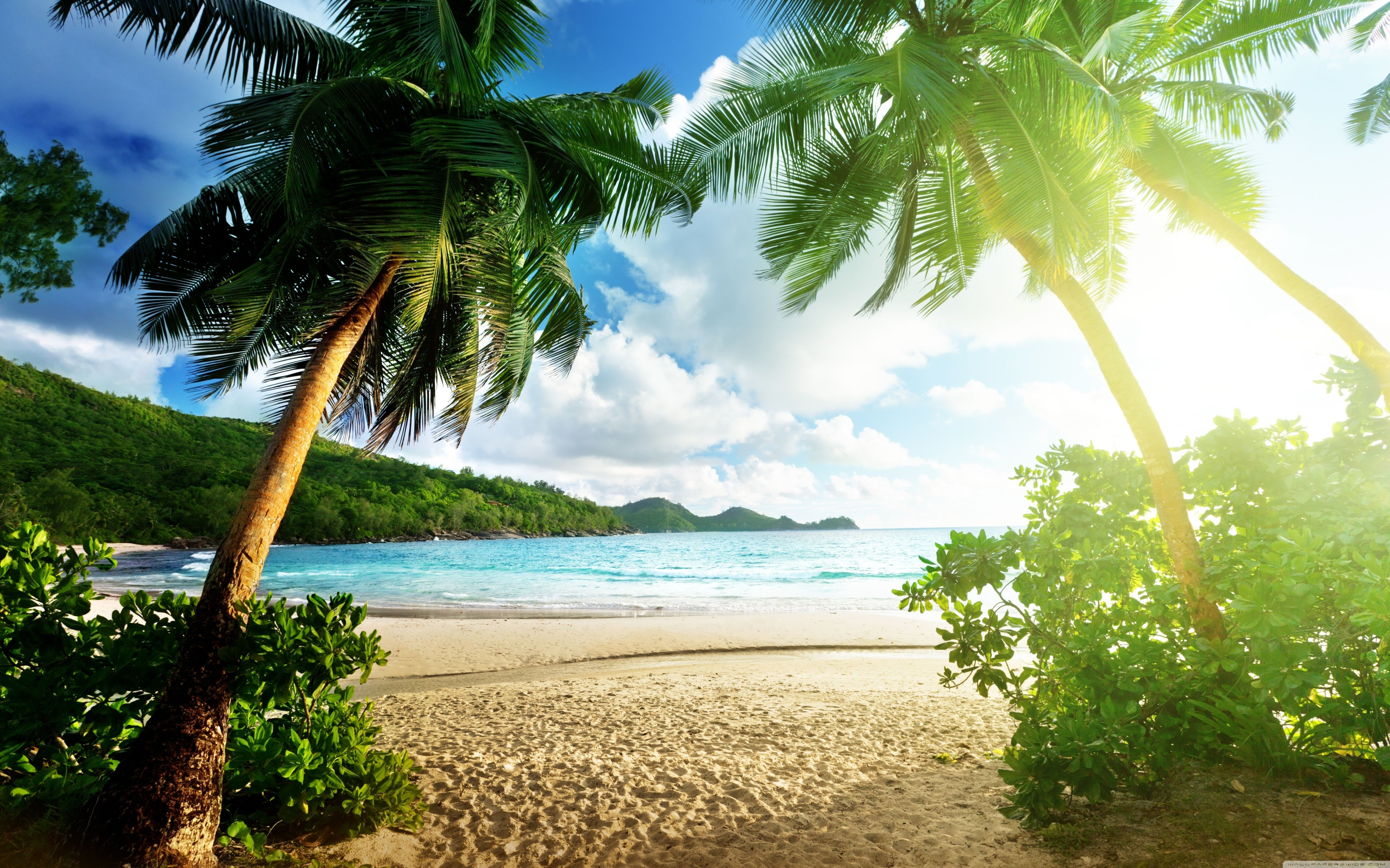 Island Wallpapers Top Free Island Backgrounds