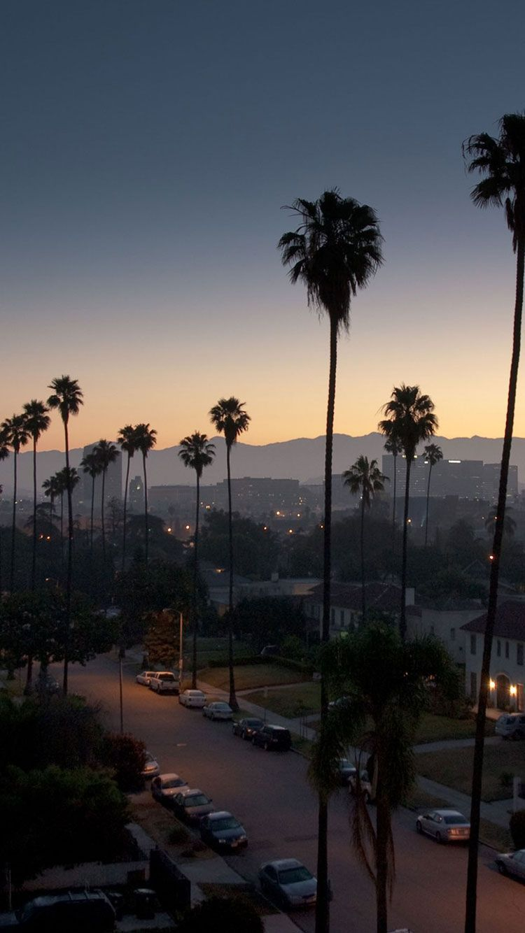 Hollywood California Iphone Wallpapers Top Free Hollywood