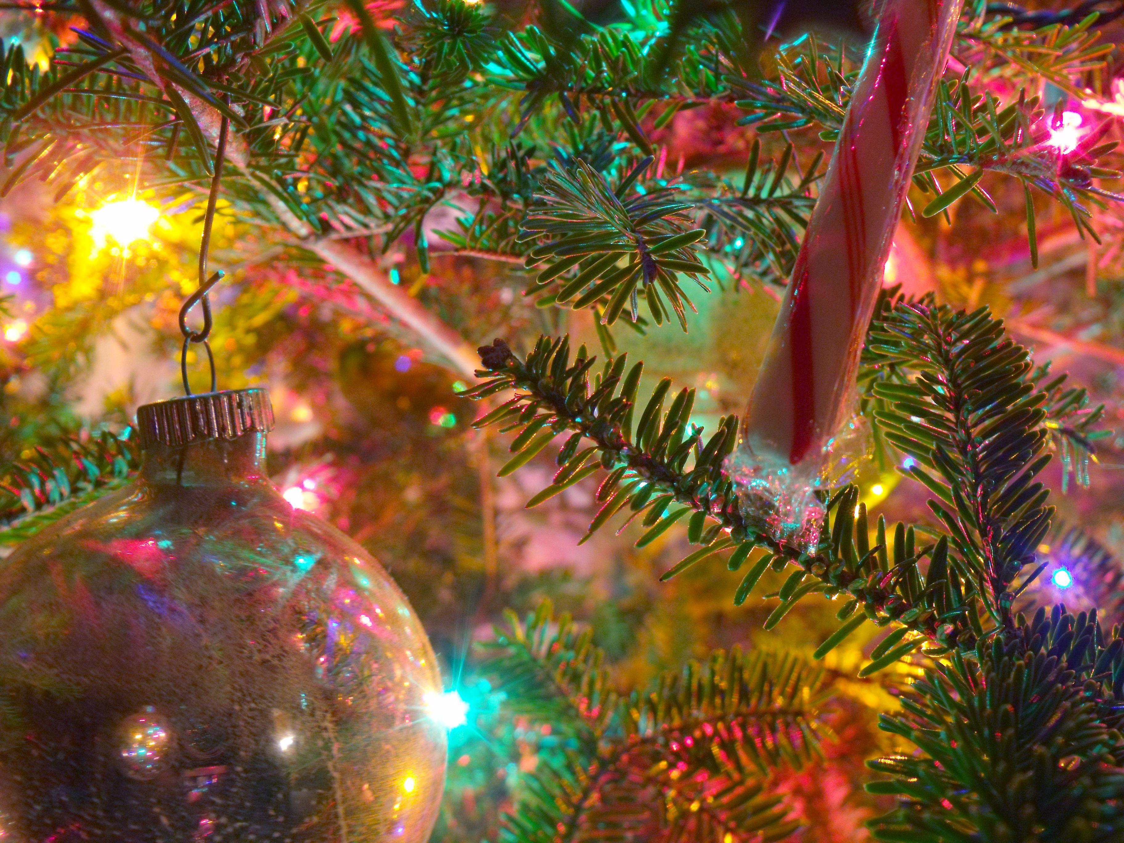 Hình nền máy tính Giáng sinh 3648x2736.  Hình ảnh của Arlington