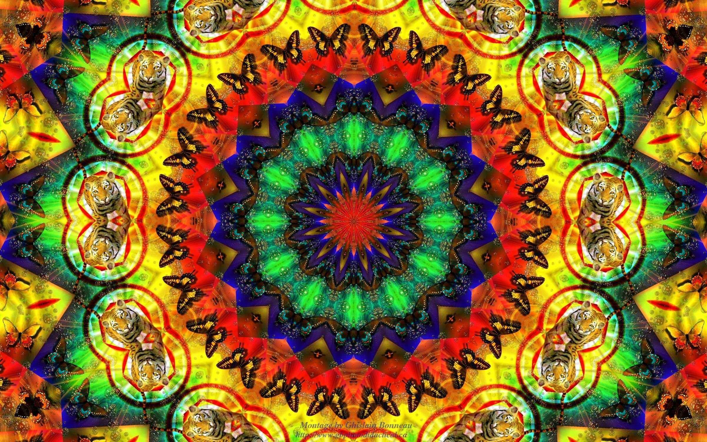 Trippy Hippie Wallpapers Top Free Trippy Hippie Backgrounds
