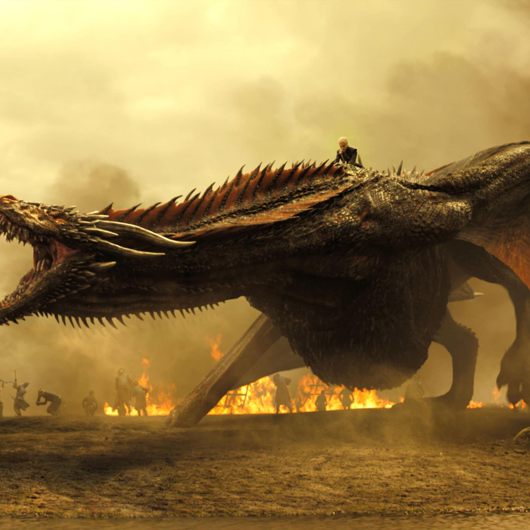 Drogon Game Of Thrones Wallpapers Top Free Drogon Game Of