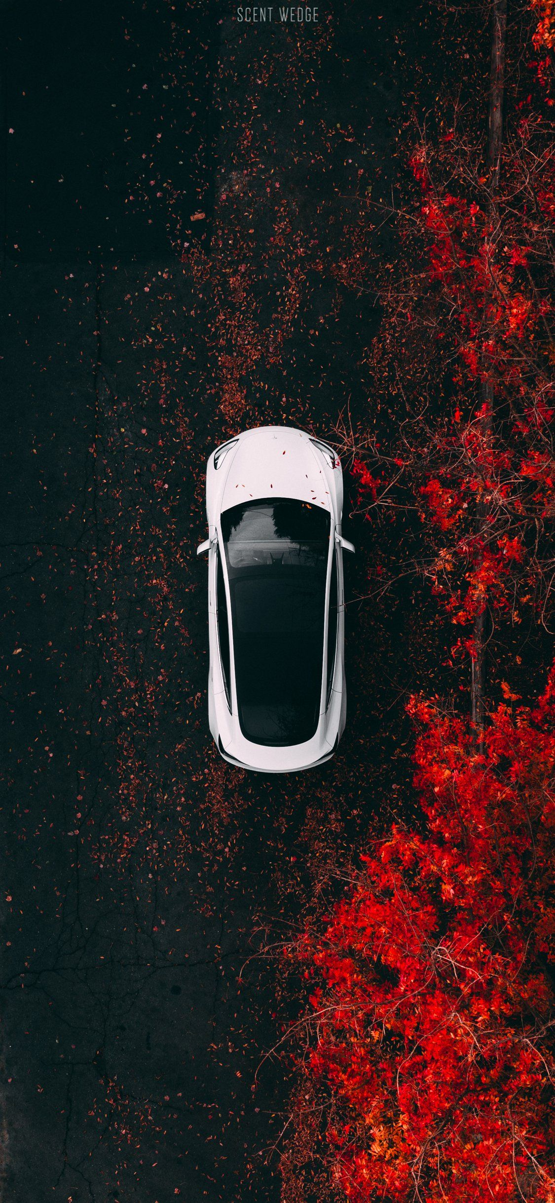 Tesla Model 3 Iphone Wallpapers Top Free Tesla Model 3 Iphone Backgrounds Wallpaperaccess
