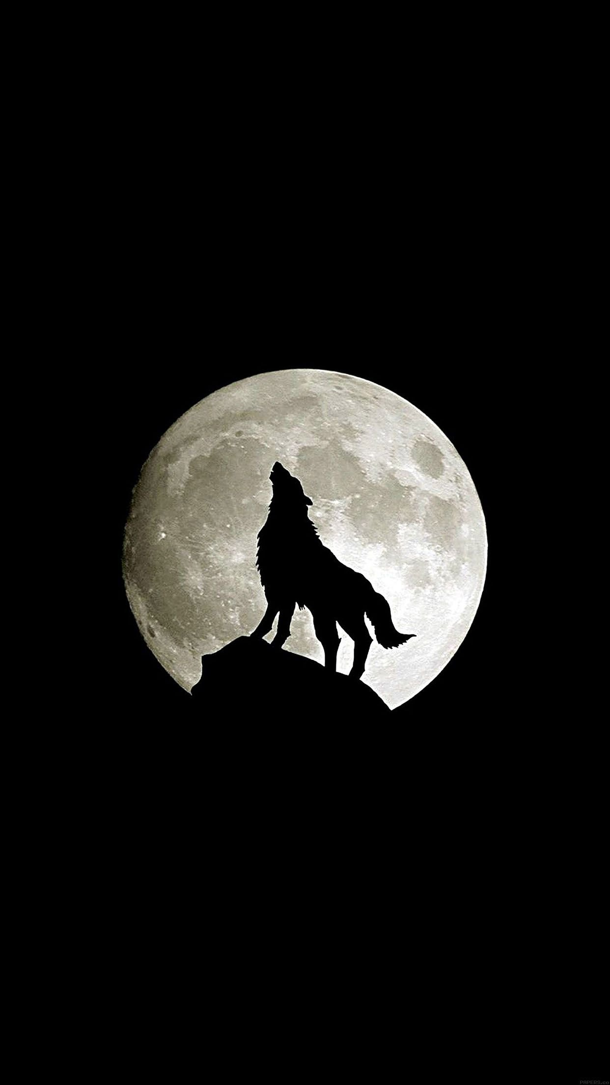 Black Wolf Iphone Wallpapers Top Free Black Wolf Iphone Backgrounds Wallpaperaccess