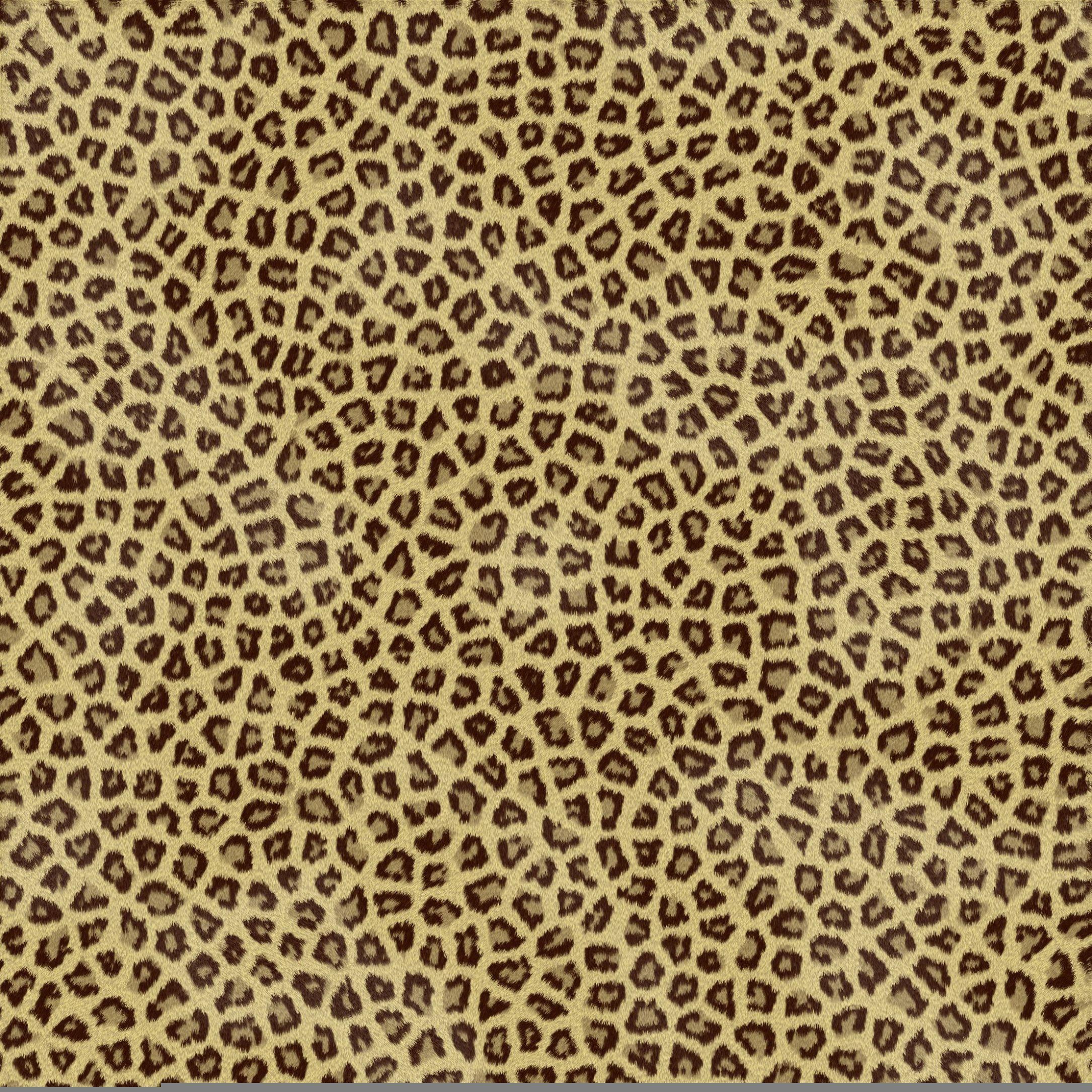 Animal Print Wallpapers - Top Free Animal Print Backgrounds ...