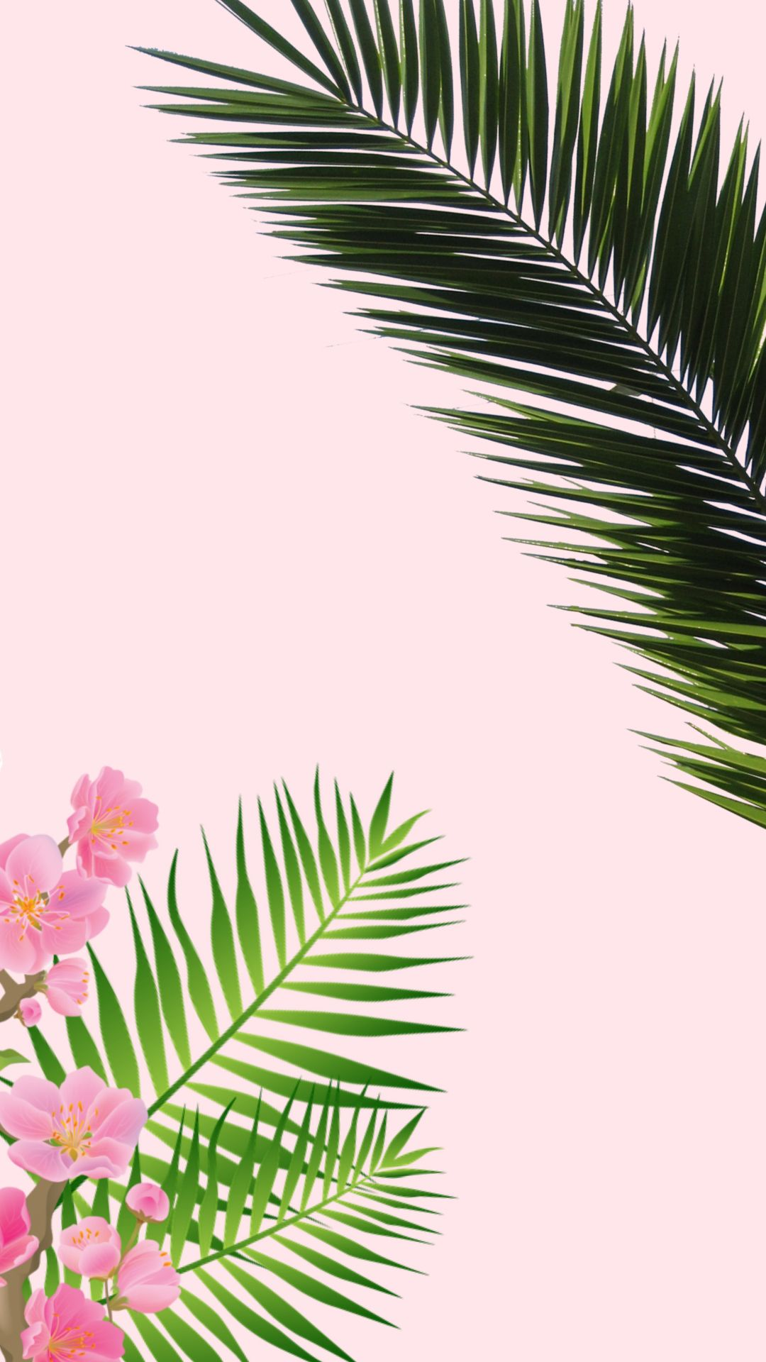 Aesthetic Palm Tree Phone Wallpapers Top Free Aesthetic Palm Tree