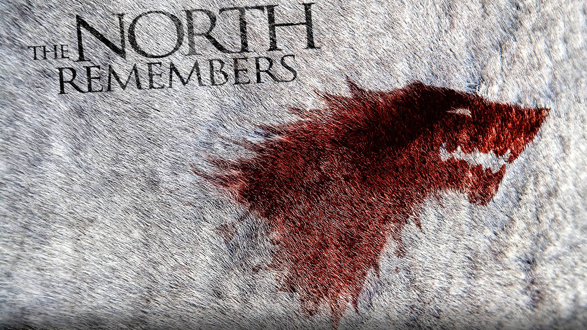 Game Of Thrones Stark Wallpapers Top Free Game Of Thrones Stark