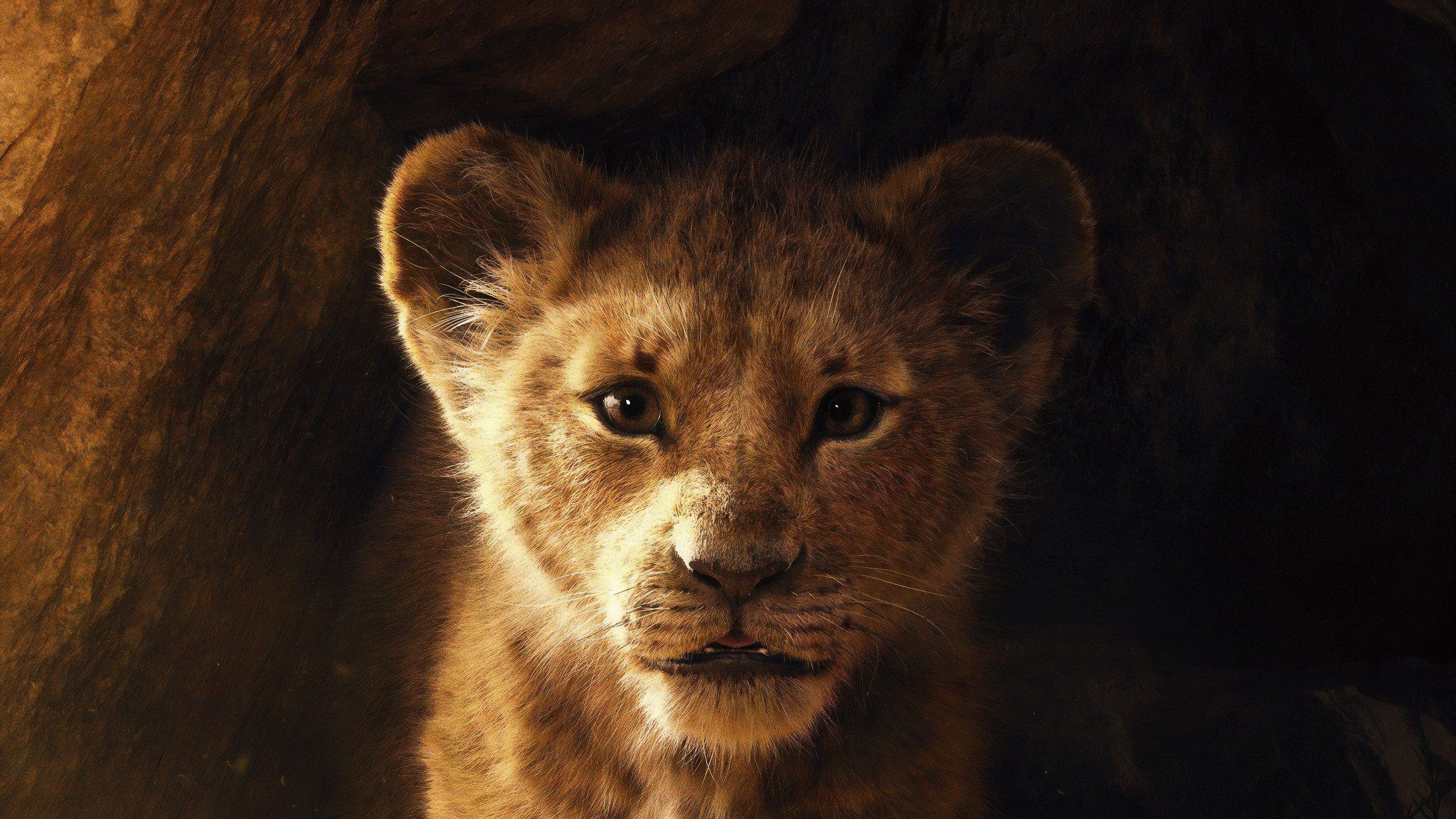 Lion King 4k Wallpapers Top Free Lion King 4k Backgrounds Wallpaperaccess