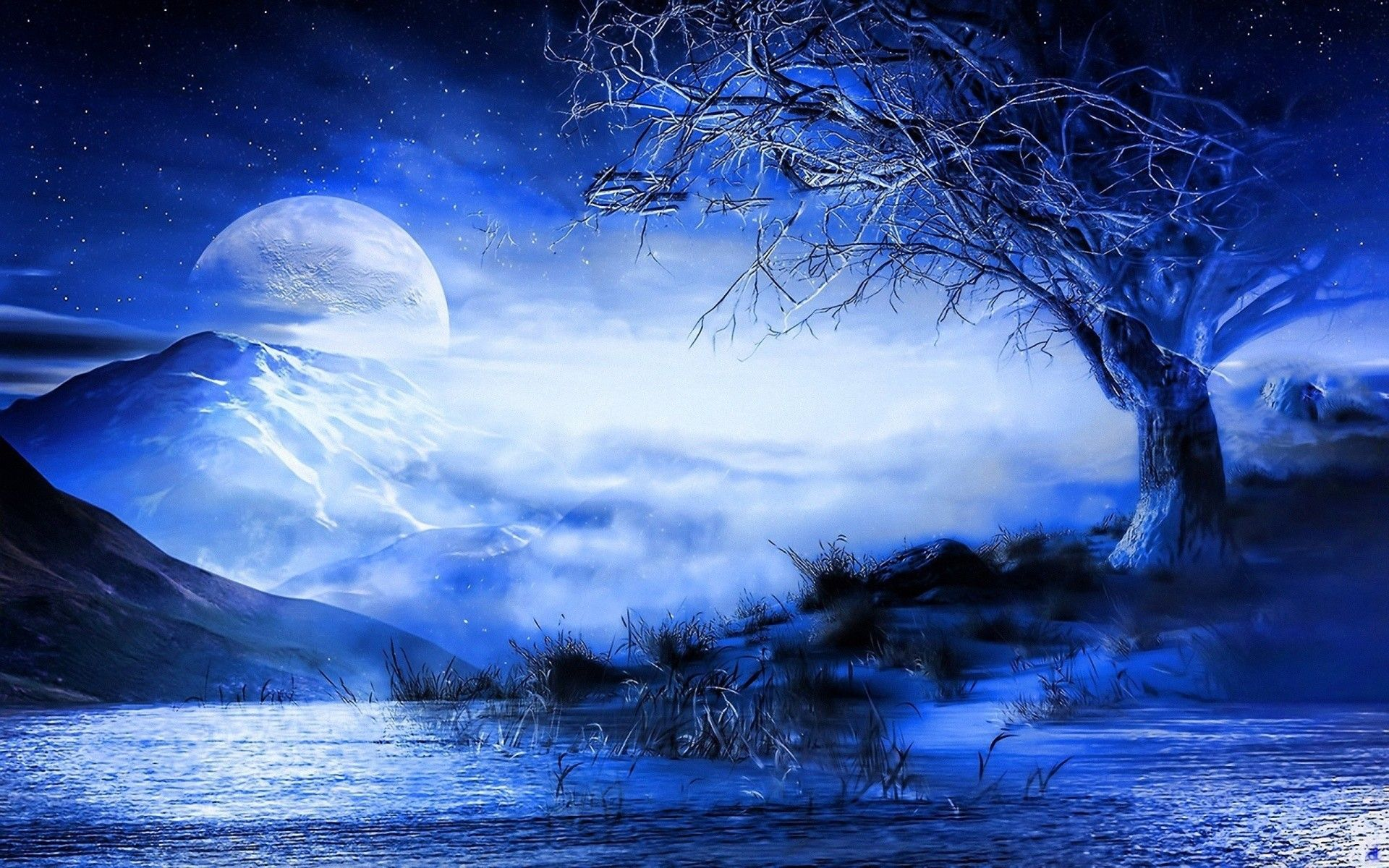 Anime Moon Wallpapers Top Free Anime Moon Backgrounds Wallpaperaccess