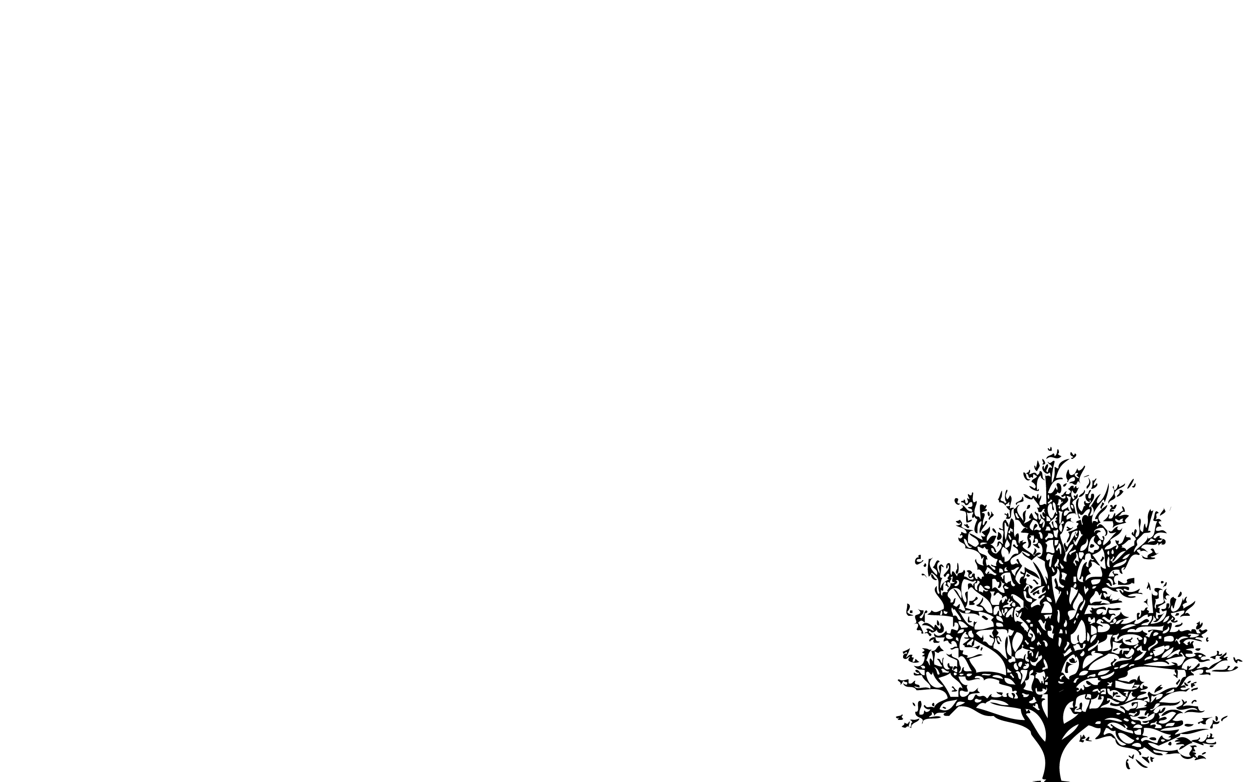 White Minimalist Desktop Wallpapers Top Free White Minimalist Desktop Backgrounds Wallpaperaccess