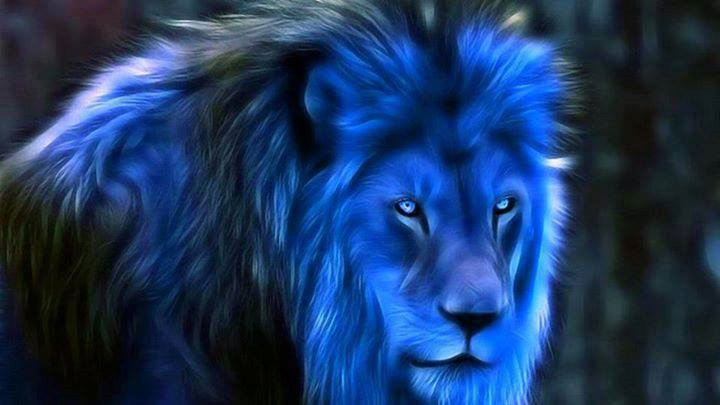 Blue Howling Lion 4k Wallpapers Top Free Blue Howling Lion 4k
