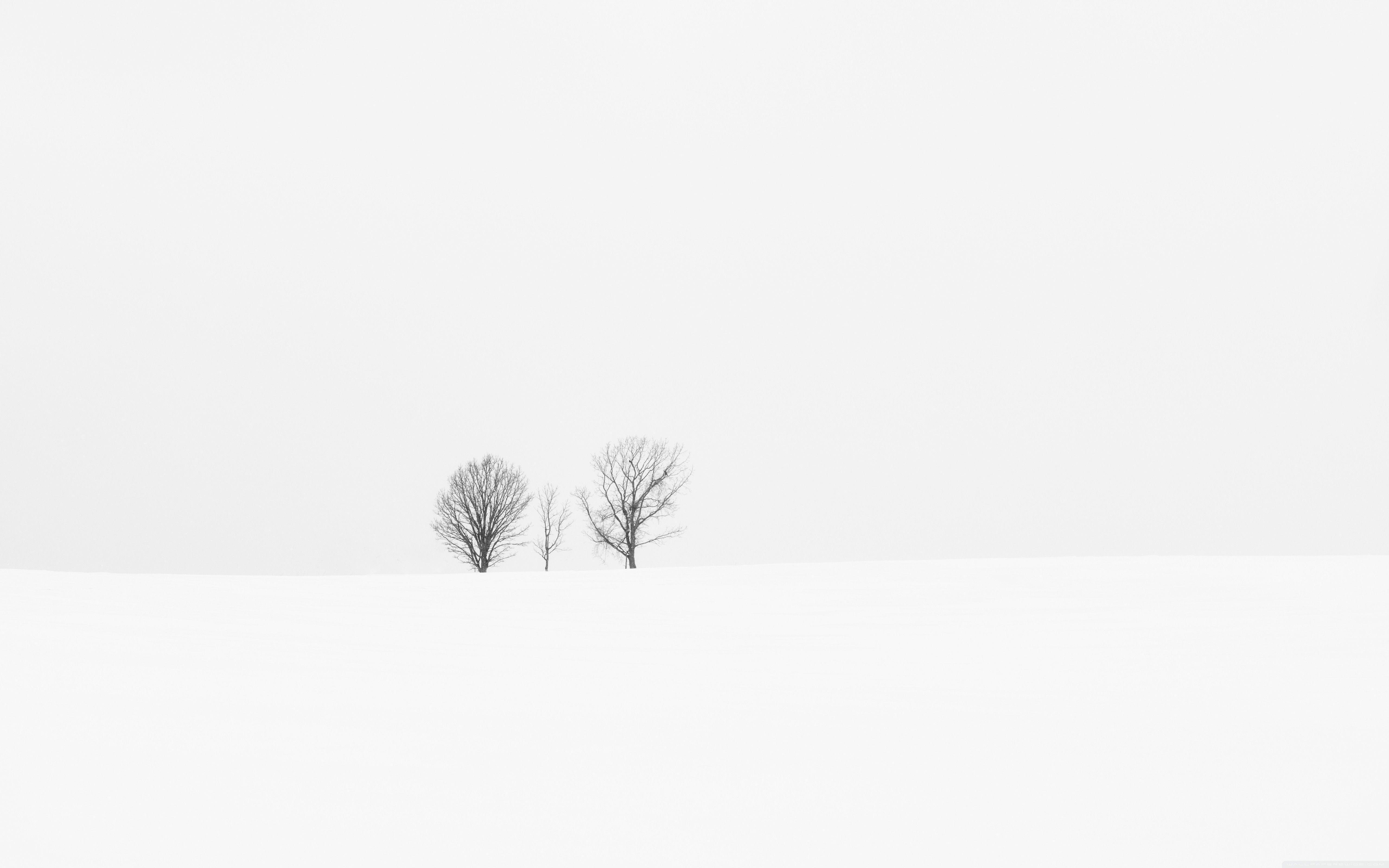 White Minimalist Wallpapers Top Free White Minimalist