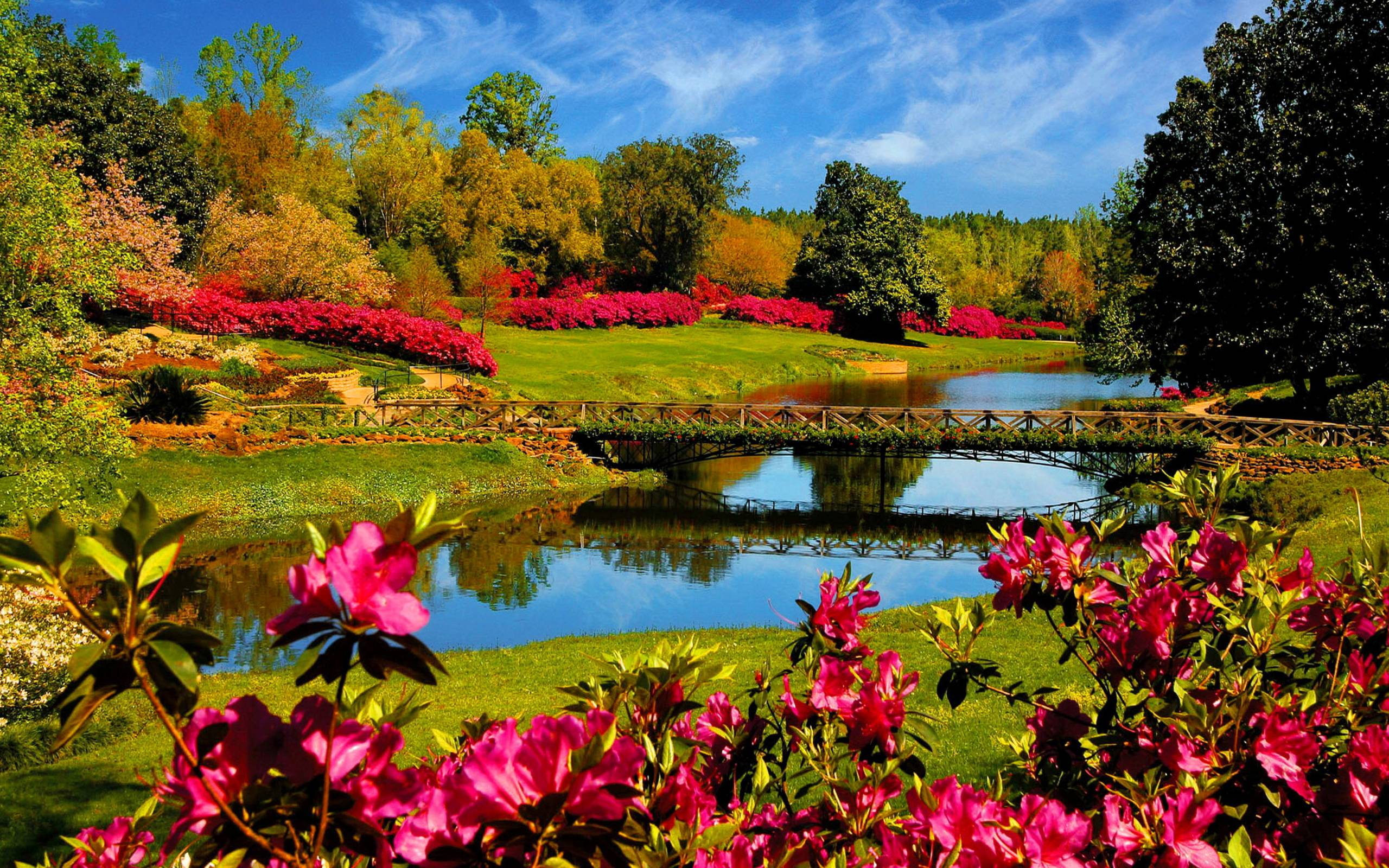 Spring Nature Wallpapers Top Free Spring Nature