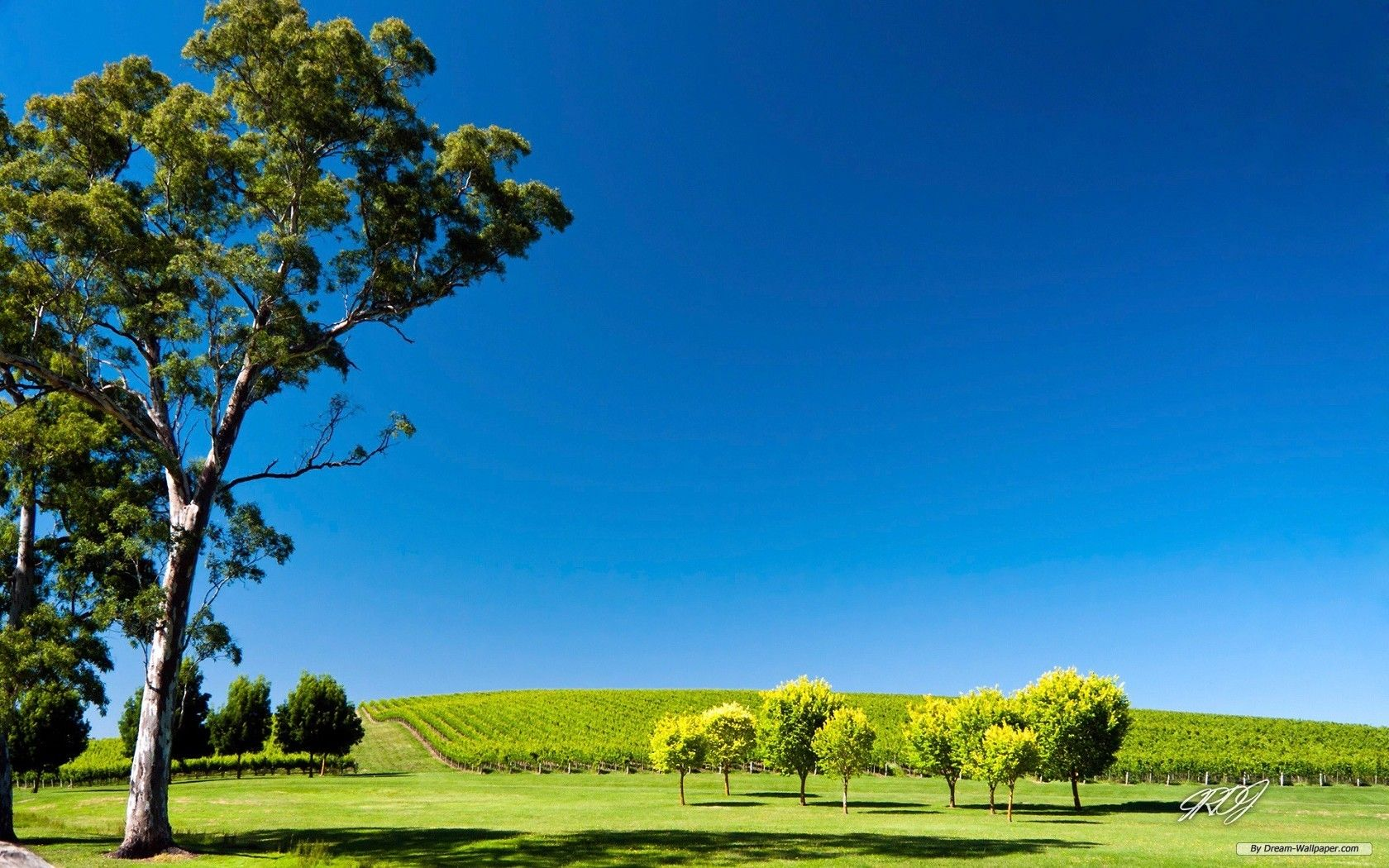 Australia Scenery Wallpapers Top Free Australia Scenery