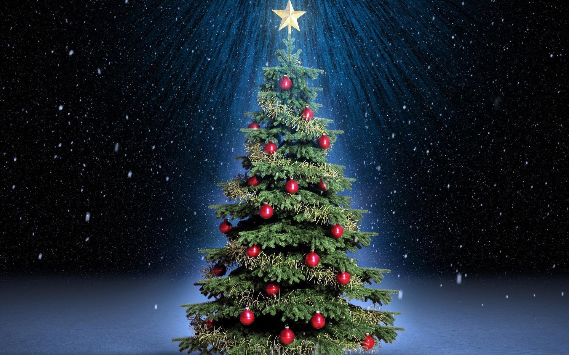 Cute Christmas Tree Wallpapers Top Free Cute Christmas Tree