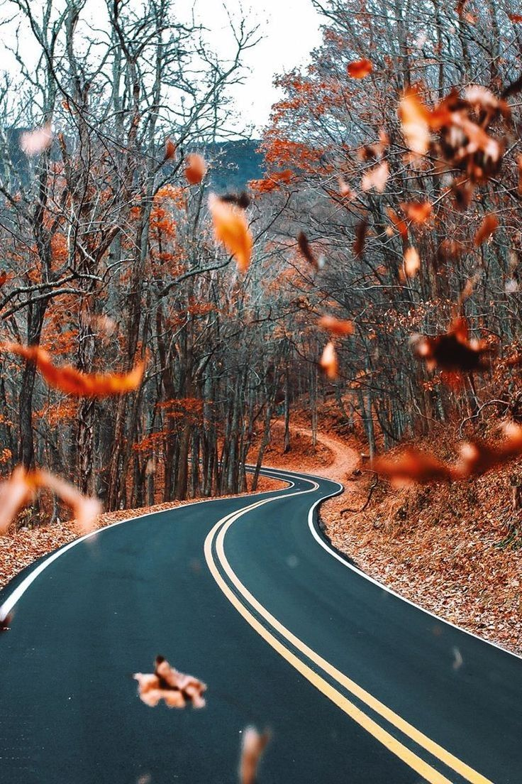 Fall Aesthetic Wallpapers , Top Free Fall Aesthetic