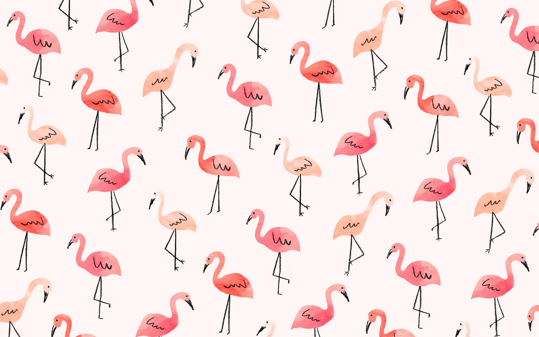Flamingo Wallpapers Top Free Flamingo Backgrounds Wallpaperaccess