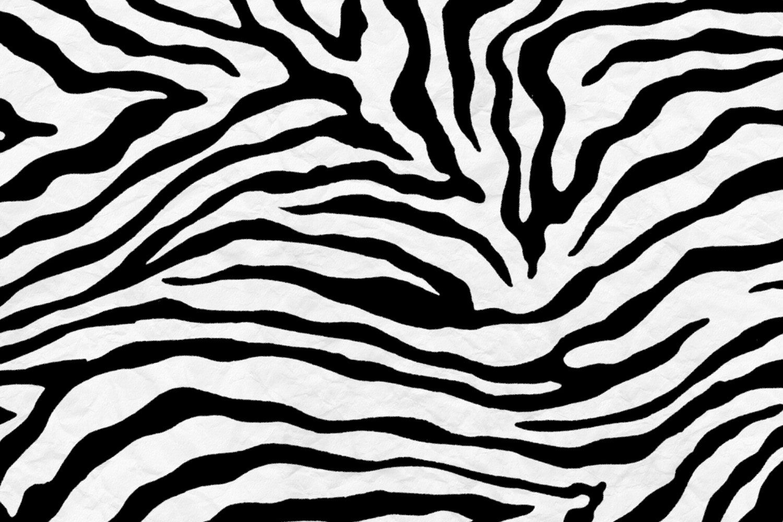 Zebra Pattern Wallpapers - Top Free Zebra Pattern ...